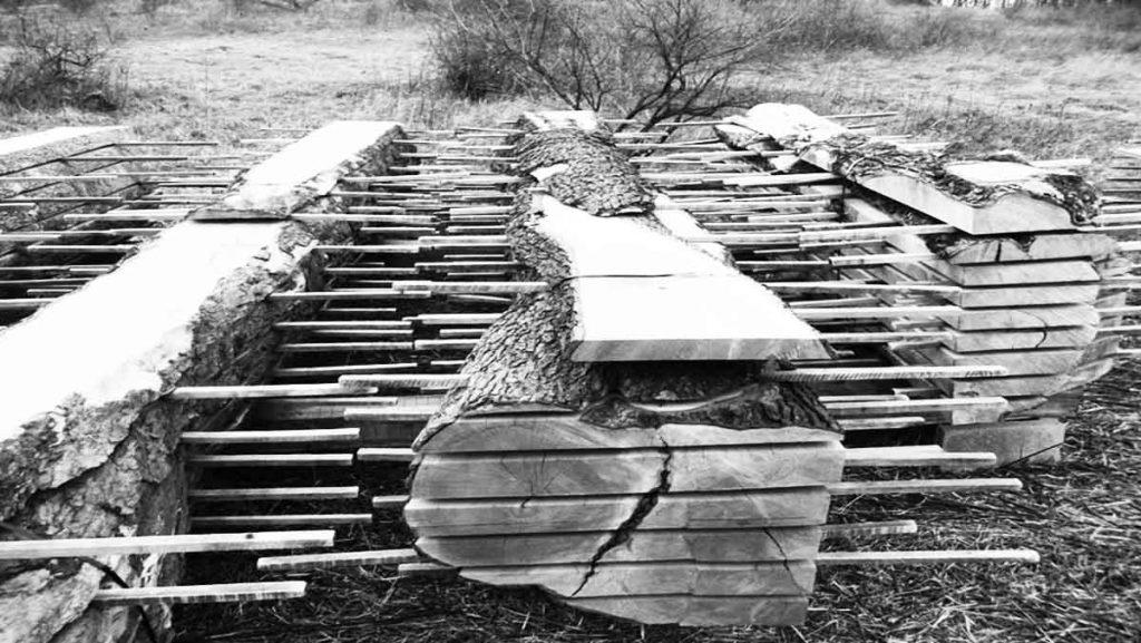 planche le séchage du bois